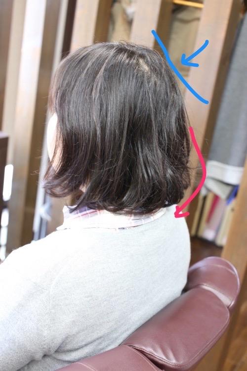 IMG_0168縮小 (1)