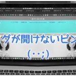 ブログが開けないピンチ!(・・;)